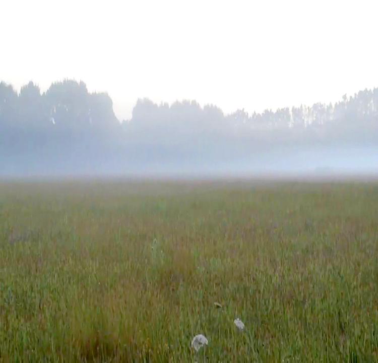chasing fog club new members welcome
